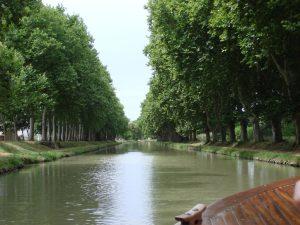 Une fresque sera dessinée le long du canal du midi sur le mur de la trémie du pont Guilheméry, la mairie de Toulouse a lancé un appel à projets en ce sens.