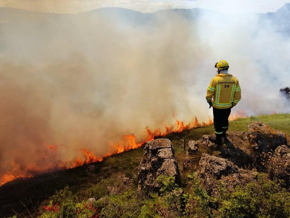 feu-herault-forestiers-sapeurs