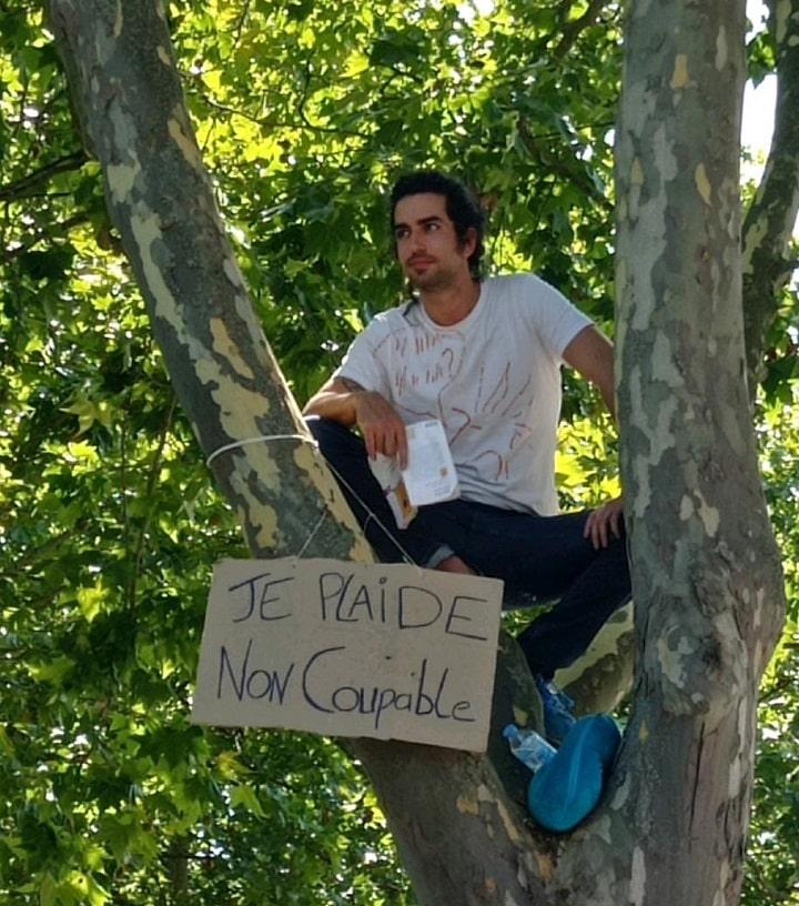 grimpeur GNSA Blagnac arbre